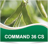 Cheminova COMMAND 36 CS