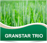 Cheminova GRAN STAR TRIO