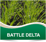 BATTLE DELTA - Cheminova