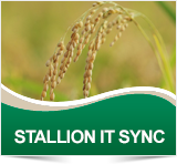 STALLION IT SYNC - Cheminova