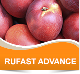 RUFAST ADVANCE - Cheminova