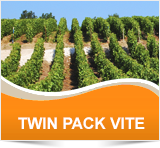 TWIN PACK VITE - Cheminova